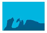 logo de VTF séminaires
