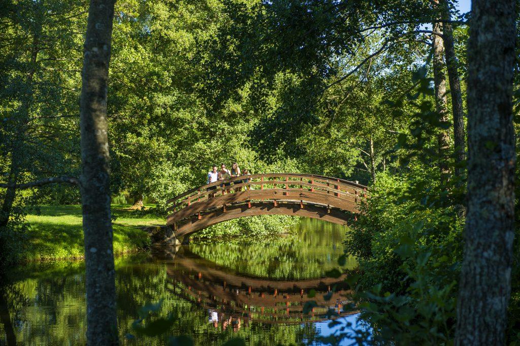Pont rivière Saint Sauves